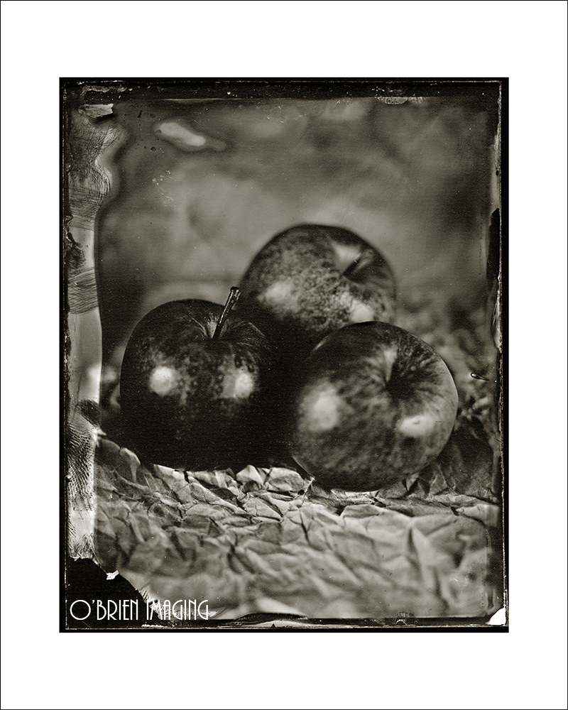 Wet Plate Collodion Image of three apples